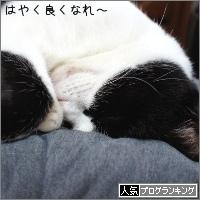 dai20180214_banner.jpg