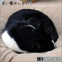 dai20180215_banner.jpg