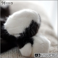 dai20180219_banner.jpg