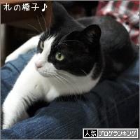 dai20180221_banner.jpg