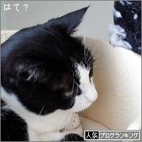 dai20180222_banner.jpg