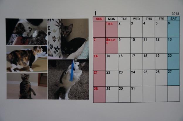 2018年1月のニャンズカレンダー
