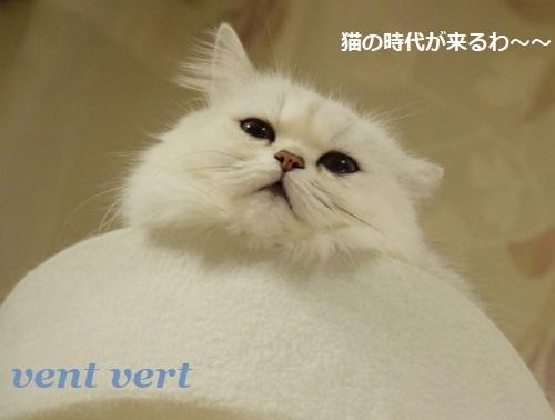猫の時代2