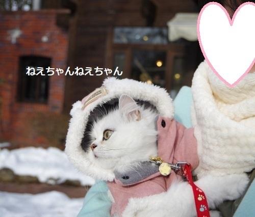 雪の清里4