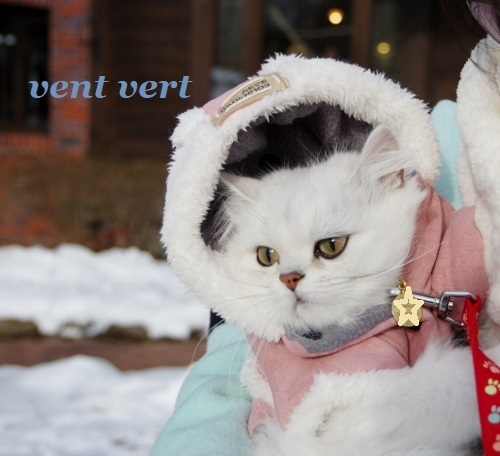 雪の清里3