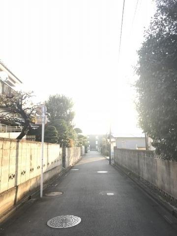 2017-12-08.jpg