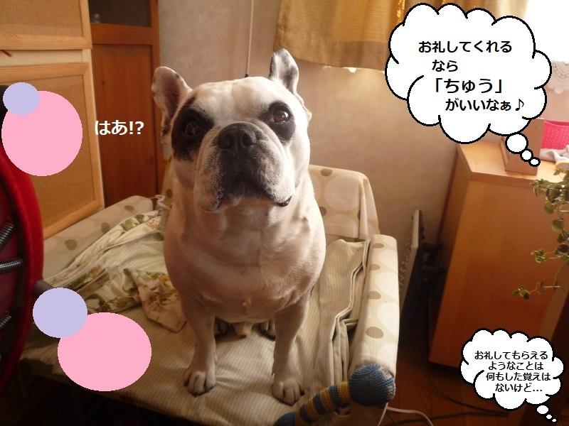 にこら201011to201108 1031