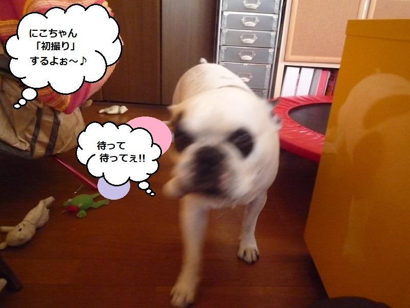 にこら201011to201108 1033
