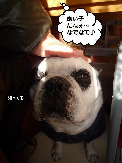 にこら201011to201108 1341