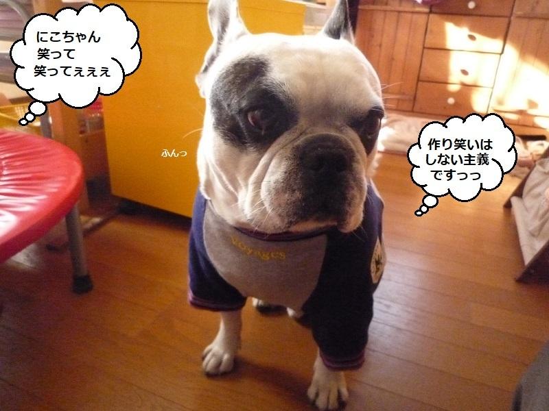 にこら201011to201108 1344