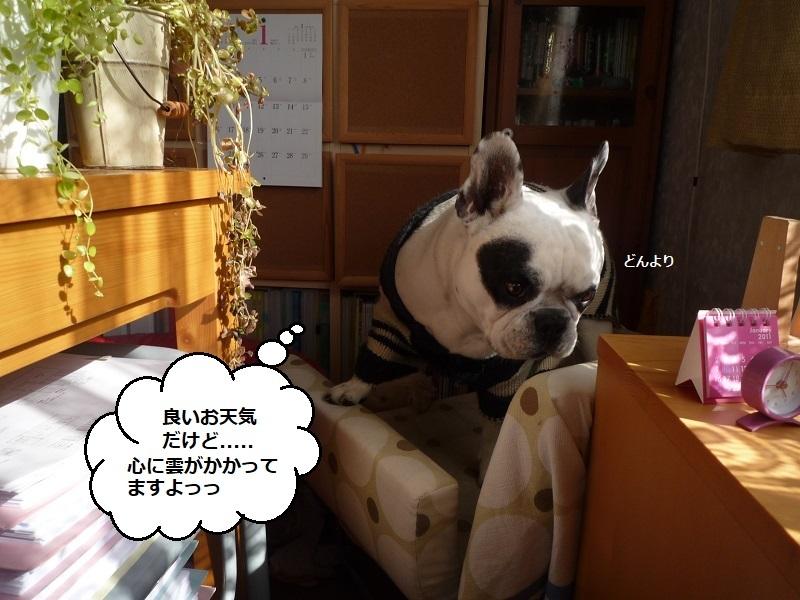 にこら201011to201108 1518