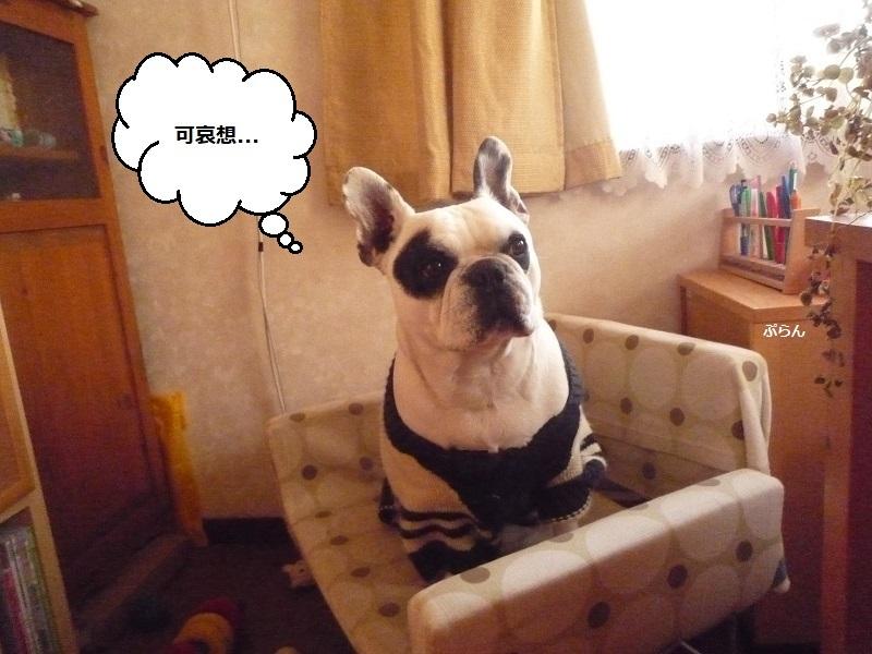 にこら201011to201108 1529