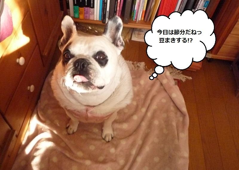にこら201011to201108 1800