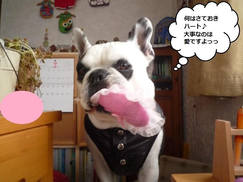 にこら201011to201108 1838