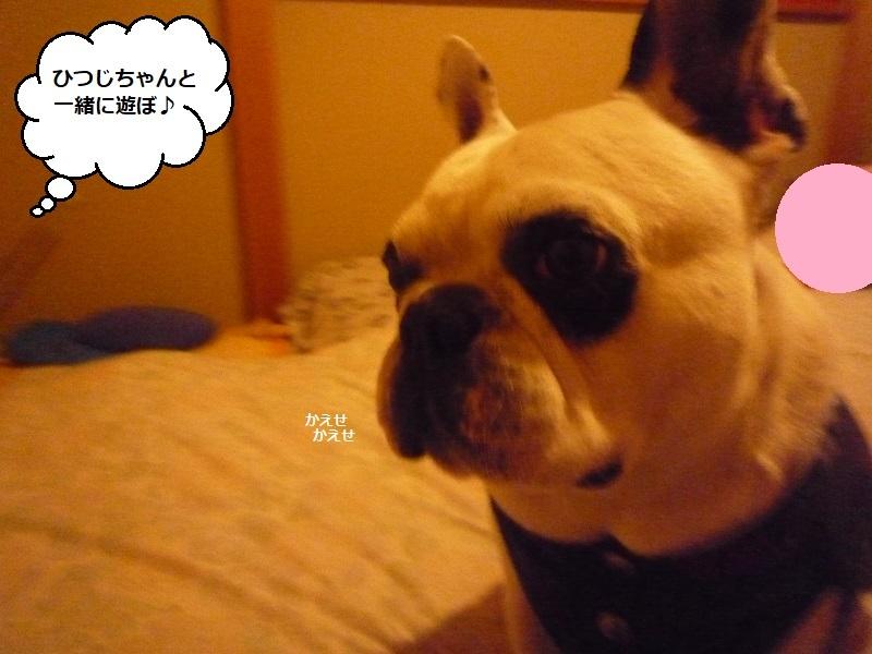にこら201011to201108 1842