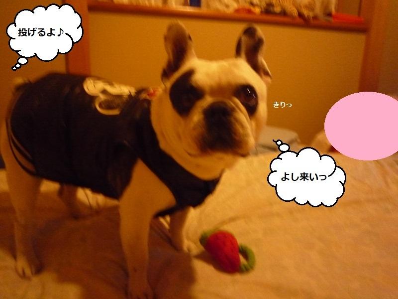 にこら201011to201108 1844