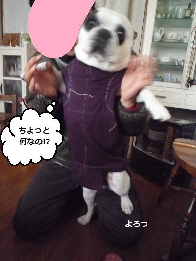 にこら201011to201108 1927