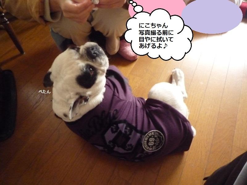 にこら201011to201108 1930