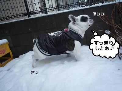 にこら201011to201108 2112