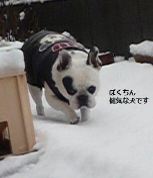 にこら201011to201108 2129 - コピー