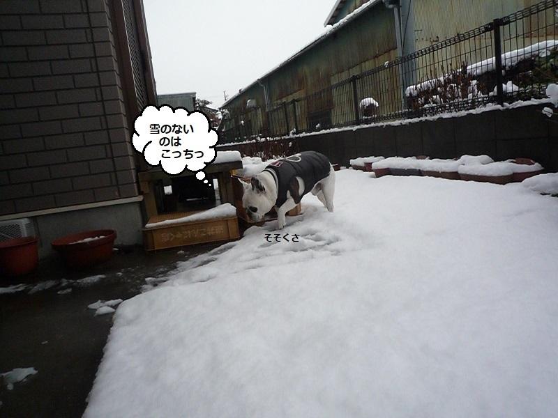 にこら201011to201108 2141