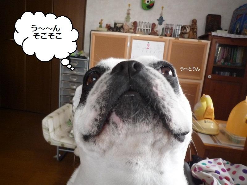 にこら201011to201108 2621