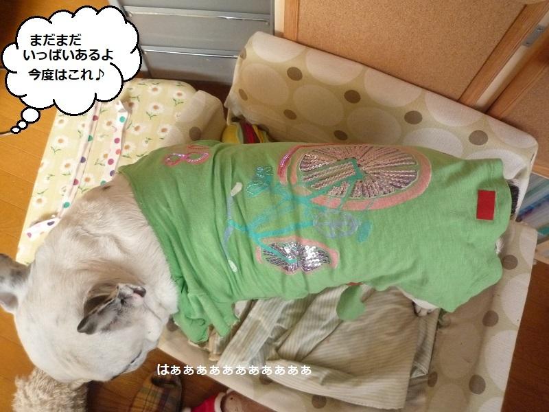 にこら201011to201108 2653