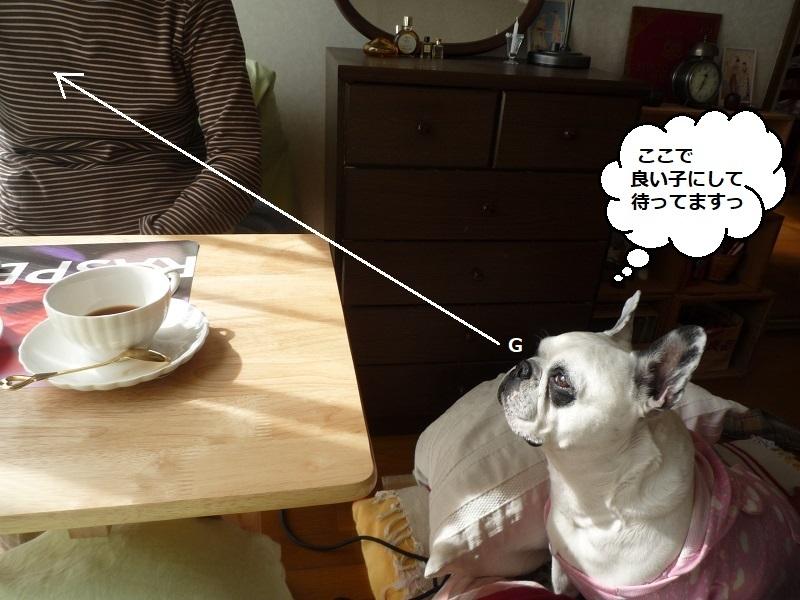 にこら201011to201108 2659