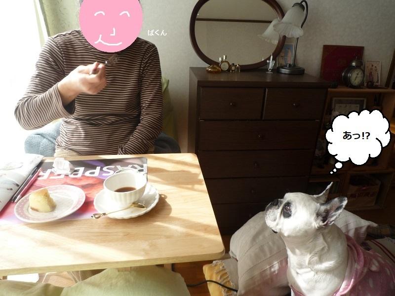 にこら201011to201108 2661
