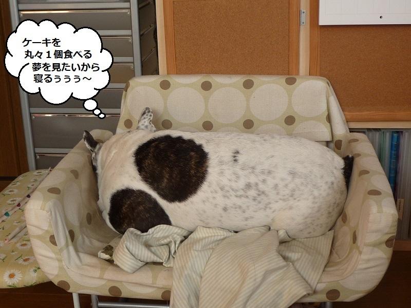 にこら201011to201108 2665