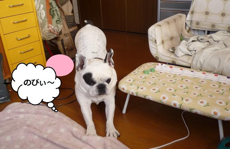 にこら201011to201108 2666