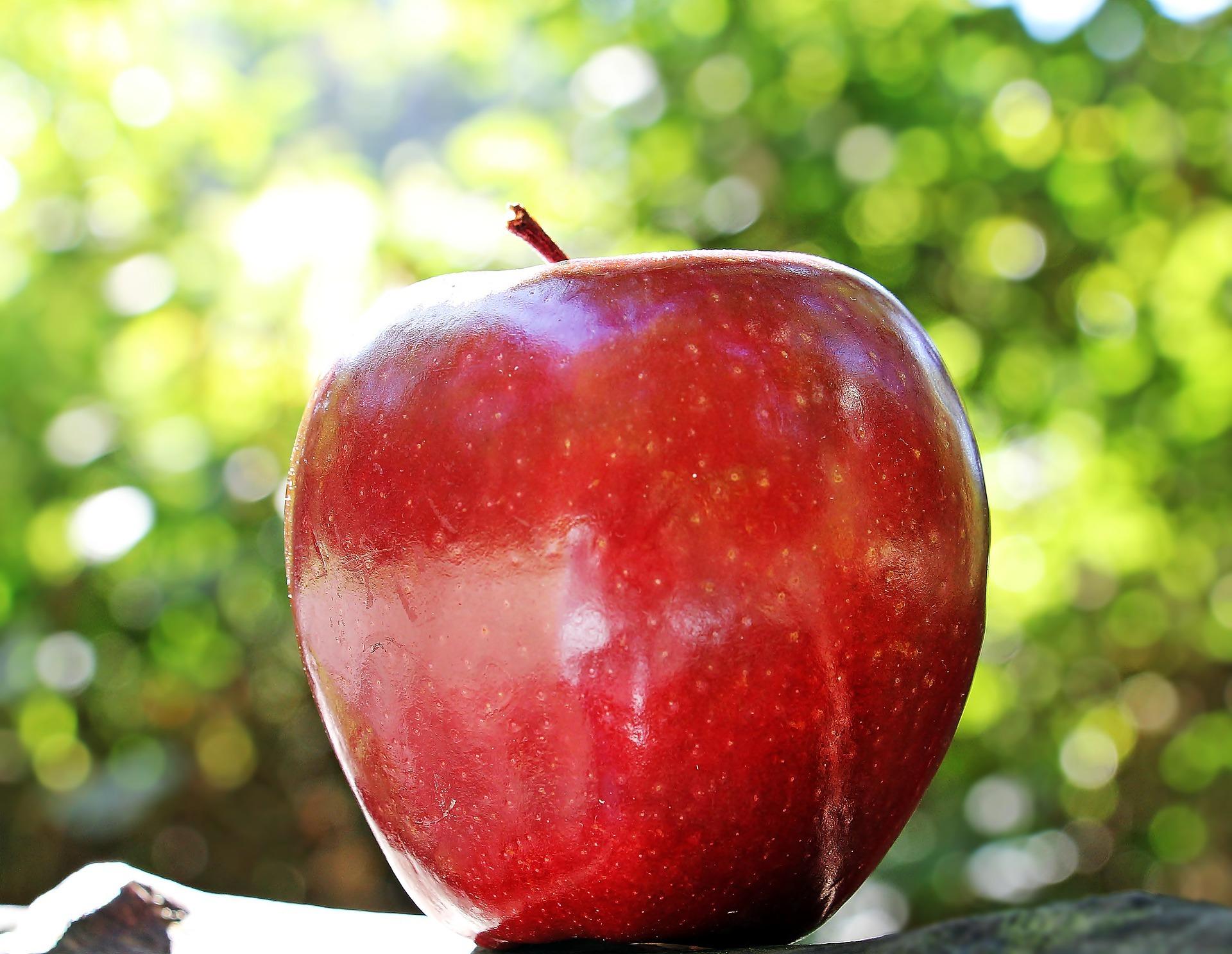 apple-1702316_1920.jpg