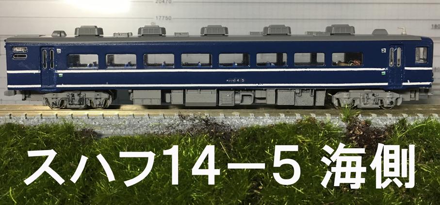 suhafu14-5umi.jpg