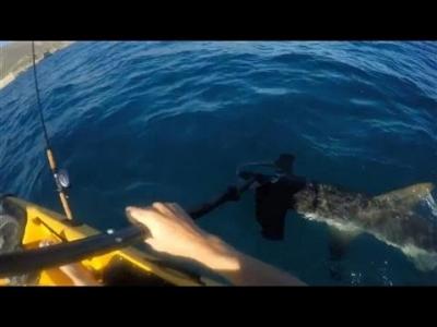 【衝撃!】カヤックで釣りしてたらサメに襲われた!