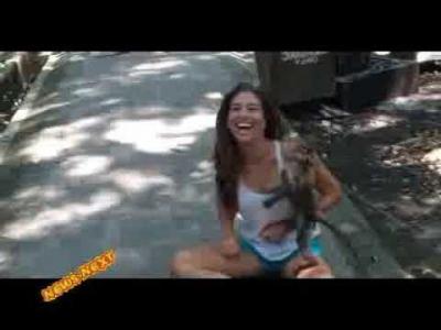 【いいね!】サルになりたい!美女の胸に執着するサル・・・