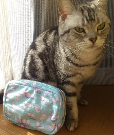 猫 銀ねこポーチ