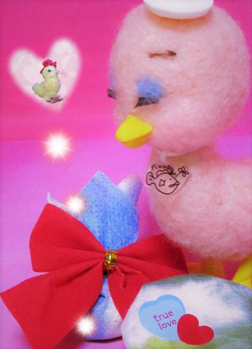 ミーガプレゼント (2)