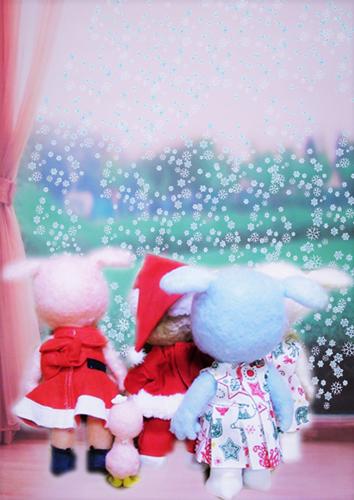 雪A (2)