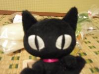 黒猫でーす