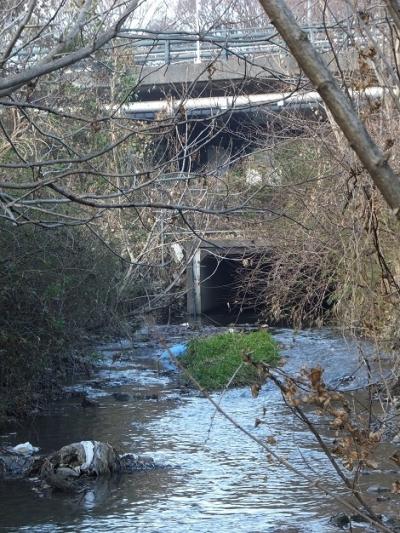 中津川に合流する蟹渕川