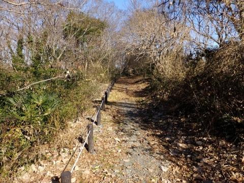 相模三川公園散策路