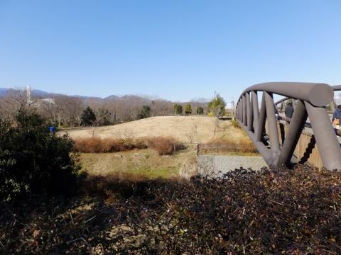 さくら橋と相模川左岸堤防南端