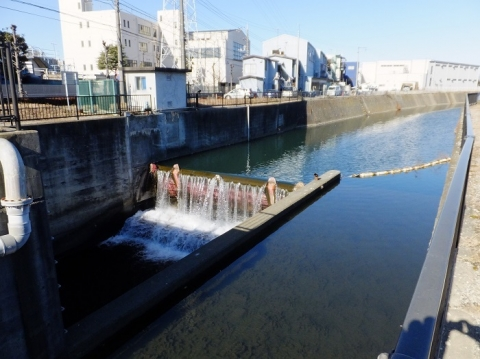 鳩川放水路