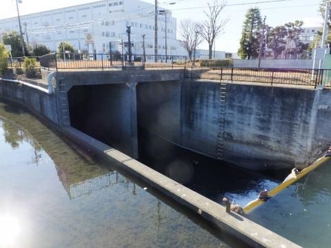鳩川放水路入口