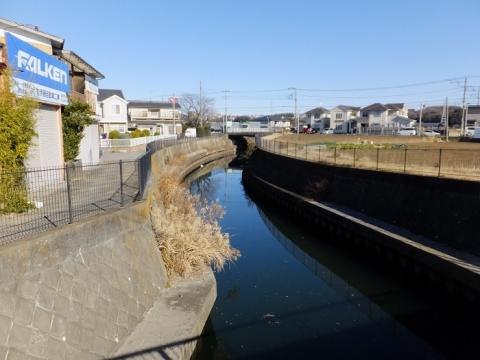 籏川橋より鳩川上流を望む
