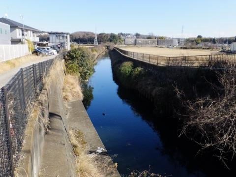 鳩川橋より鳩川上流を望む