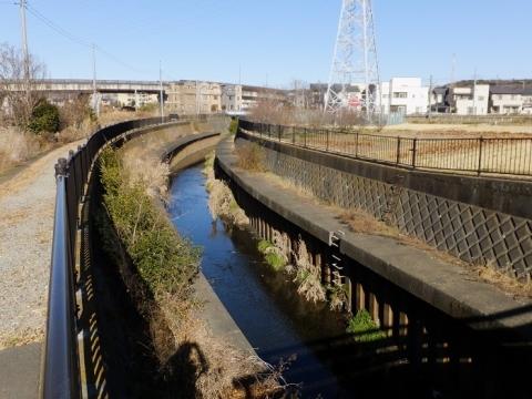 座間市西中付近を流れる鳩川