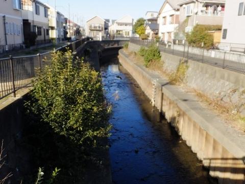 鮎の大橋より鳩川上流を望む