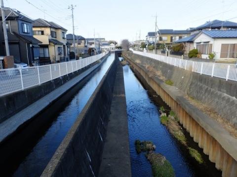 平和橋より左岸用水路・鳩川上流を望む