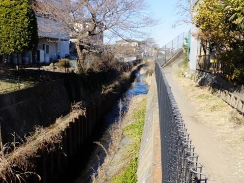 鳩川・新戸調整池付近